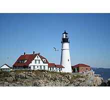 Portland Head Light House with seagull Photographic Print