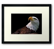 Enemy Alert Framed Print
