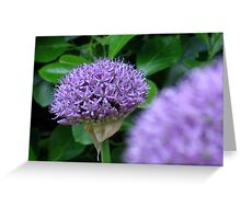Alium Distortion Greeting Card