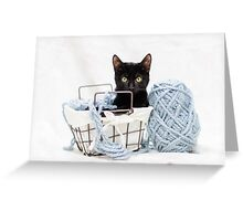Kitten in Yarn Basket Greeting Card