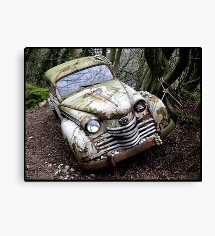 Whitey 2 Canvas Print