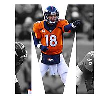 M is for Manning Photographic Print