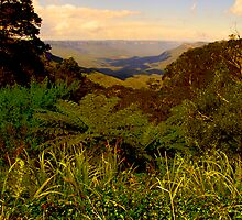 View - The Blue Mountains - The HDR Series by Philip Johnson