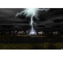 Buffalo Storm Photographic Print