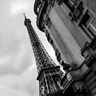 Paris - Eiffel tower by David Petranker