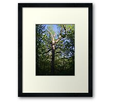 Arms to the Sky Framed Print