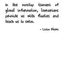Information Tsunami by Fiona Doyle