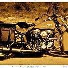 Harley - Davidson (Hydral Glider.1956).Brown Sugar Story. Views: 2984 thank you easy riders !  Featured . Nostagic Art and Photography. Hold Your Memories. Buy what you like! by © Andrzej Goszcz,M.D. Ph.D