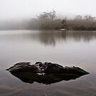 Lake Dobson I by Doug Thost