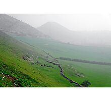 Along the Lower Reaches of Bunster Hill Photographic Print