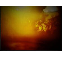 The Endless Summer ... Photographic Print