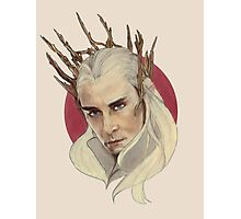 Thranduil, King of Mirkwood Photographic Print