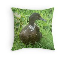 A Mallard Drake Throw Pillow