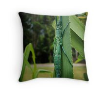 Peppermint stick insect Throw Pillow