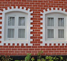 Colonial Windows by Entropy