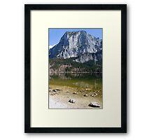 Alpine Framed Print