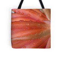 Succulent peach Tote Bag