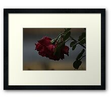 Under the weight Framed Print