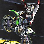 James Stewart 2007 Supercross Champion by robkinseyart