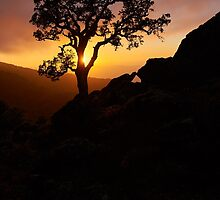 Silhouette at Sunset by Andrew  Walmsley
