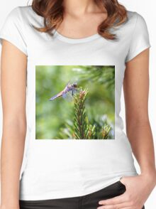 Dragonfly wings Women's Fitted Scoop T-Shirt