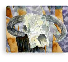 Cow skull southwestern art Canvas Print