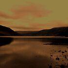 dusk by cameraman