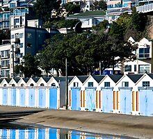 Oriental Bay Houses by Lisa Wilson