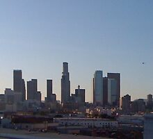 LA Skyline by findtom