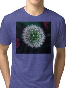 Dandy's Lion Tri-blend T-Shirt