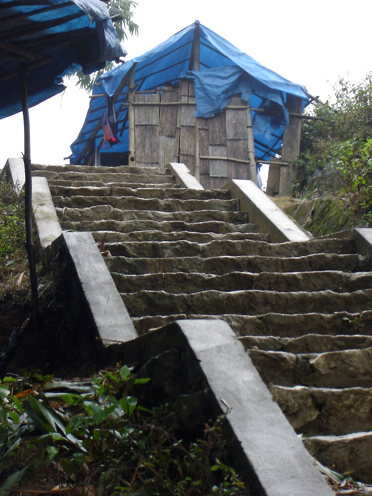 Sapa Stairs by Keith Russell