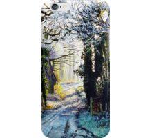 Winter Walk iPhone Case/Skin