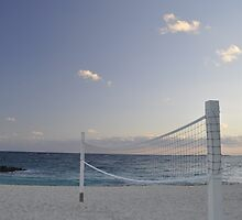 beach volleyball anyone? by A.R. Williams