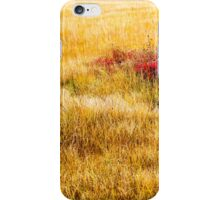 Fall Reed iPhone Case/Skin