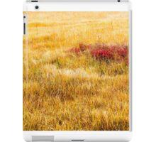 Fall Reed iPad Case/Skin