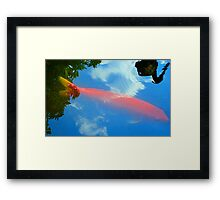 Fish with Reflected Bird Framed Print