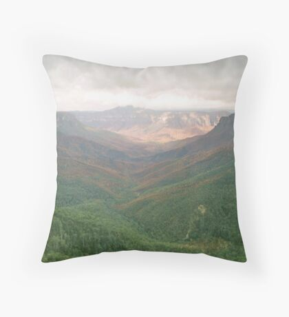 scarred valley Throw Pillow