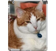 Pampered Boy iPad Case/Skin