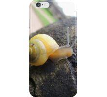 Globe Trotting iPhone Case/Skin
