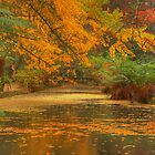 Alfred Nicholas Gardens - Lake Panorama by Andrew Schweitzer