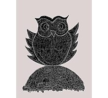 Frizzy-curly owl in black and white on pale background Photographic Print