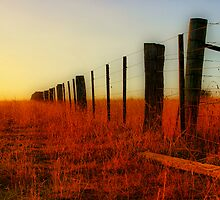 """""""The Boundary Line """" by Phil Thomson IPA"""
