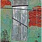 Virgin Island Door #3 by Mark Ross