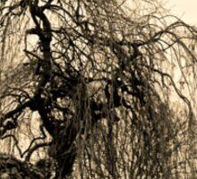 Winter Tree ............ Sticker