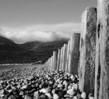 Murlough Beach View Mono Sticker