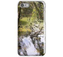 Mangroves in Whangarei iPhone Case/Skin