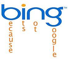 bing-google Photographic Print