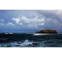 Sheep Island Photographic Print