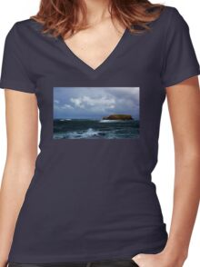 Sheep Island Women's Fitted V-Neck T-Shirt