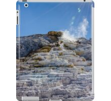 Bejeweled Palette Springs iPad Case/Skin